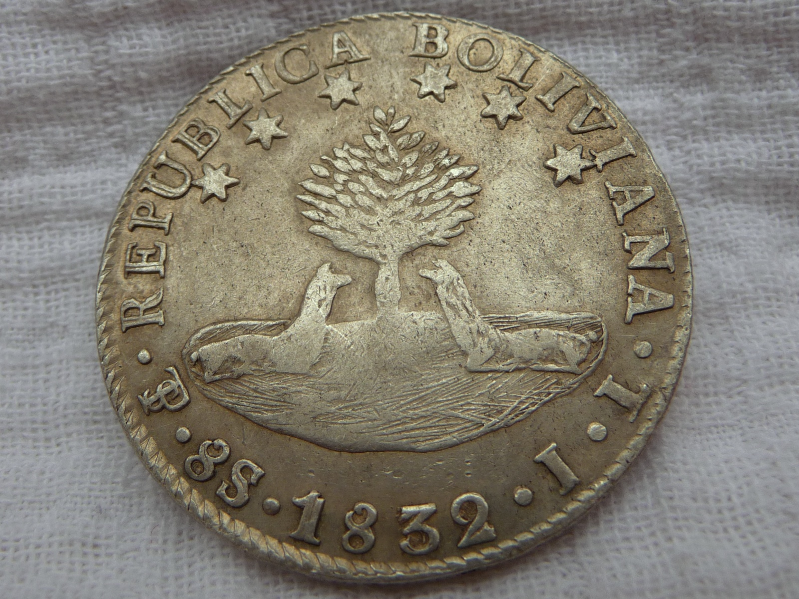 Tree Name On A Bolivian 8s 1836 Coin Community Forum
